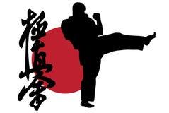 karatekick Arkivfoton