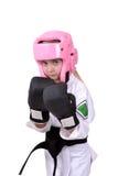 Karatekugghjul Arkivfoto
