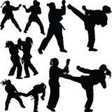 Karatemädchenschattenbild Lizenzfreies Stockbild