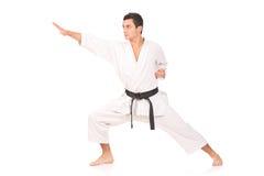 karateman royaltyfria foton