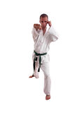 karateman royaltyfri foto