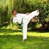 karateman arkivfoton