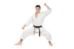 karateman arkivfoto