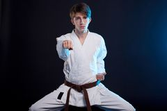 Karatepojke i kimonot som poserar i studion begrepp isolerad sportwhite royaltyfria foton