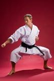 karatestance royaltyfri bild