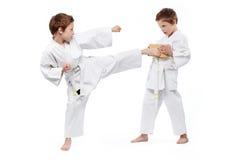Karateungar Arkivbilder