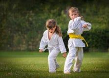 Karatevechtsporten royalty-vrije stock fotografie
