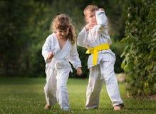 Karatevechtsporten stock fotografie