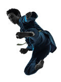 Karatevietvodaokampsportar bemannar silhouetten Royaltyfri Bild