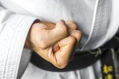 Karatevuist Royalty-vrije Stock Afbeeldingen