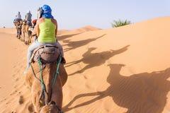 Karawana na Sahara Fotografia Stock