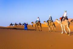 Karawana na Sahara Zdjęcie Stock