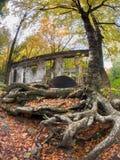 Karbid Willson Ruins lizenzfreies stockbild
