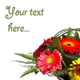 karciane dekoraci powitania róże herbaciane Zdjęcia Stock