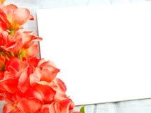 karcianego i sztucznego kwiatu przestrzeń dla odbitkowego tła Zdjęcia Royalty Free