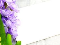 karcianego i sztucznego kwiatu przestrzeń dla odbitkowego tła Zdjęcia Stock