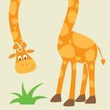 karcianej kreskówki śmieszny żyrafy powitanie Zdjęcie Stock