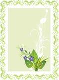 karciani bukietów kwiaty grass ladybird Fotografia Stock