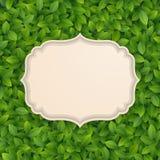 karciani zieleni liść texture rocznika Zdjęcia Royalty Free