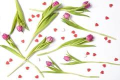 karciany dzień powitania s valentine Fotografia Royalty Free