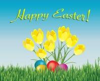 karciany Easter Obraz Stock