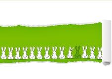 karciany Easter Obrazy Royalty Free