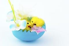 karciany Easter Obrazy Stock