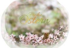 karciany Easter jajka ilustracyjny królika wektor Fotografia Royalty Free