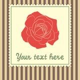 Karciany szablon z czerwieni różą Zdjęcia Royalty Free