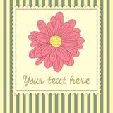 Karciany szablon z dużym kwiatem Fotografia Royalty Free