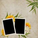 karciany zegarowy kwiatu wakacje rocznik Obrazy Stock