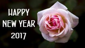 karcianych powitań szczęśliwego nowego roku Obraz Stock