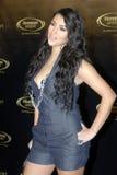 kardashian κόκκινο του Kim ταπήτων Στοκ Εικόνες