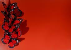 Kardieren Sie für Valentinsgrußtag Lizenzfreies Stockbild