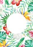 Kardieren Sie Schablone mit tropischen Blumen und Anlagen des Aquarells Lizenzfreie Stockfotografie