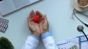 Kardiolog ręki pokazuje zabawkarskiego serce, choroba diagnostyków i traktowanie odgórnego widok, zbiory wideo