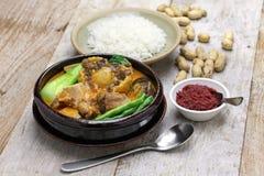 Kare kare,菲律宾牛尾炖煮的食物 免版税图库摄影