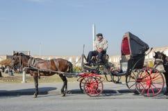 Kareciany kierowca Obrazy Royalty Free