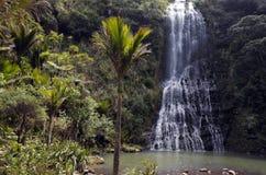 Karekare一般风景下跌新西兰 库存图片