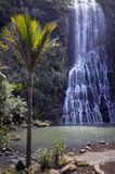 Karekare垂直的看法下跌新西兰 免版税库存图片