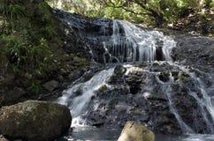 Karekare小瀑布新西兰 图库摄影