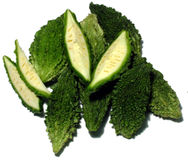 Karela Royalty Free Stock Image