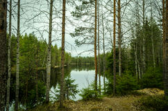 Karelia nature Stock Image