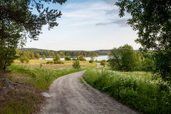 Karelian droga Zdjęcie Stock