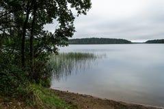 Karelian jezioro w lustrze, trawie, drzewach i San ranek wody, Zdjęcia Royalty Free