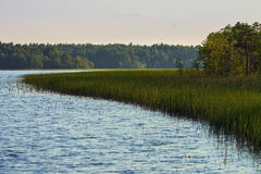 Karelian lake with edge of forest Stock Photos