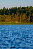 Karelian lake with edge of forest Royalty Free Stock Photo