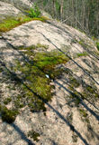 Karelian rock. Fragment of karelian rock with forest on background Royalty Free Stock Image