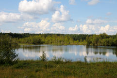 Karelian wild lake in a forest. Beautiful lake in a forest under blu sky with cumulus clouds royalty free stock images