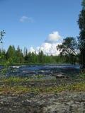 kareliya russia Arkivfoton